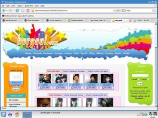bergaul.com